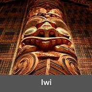 maori land lawyer rotorua